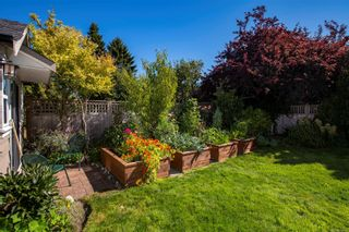 Photo 27: 129 MOSS St in : Vi Fairfield West House for sale (Victoria)  : MLS®# 883349