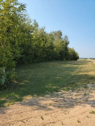 Photo 8: 50344 RGE RD 224: Rural Leduc County House for sale : MLS®# E4227195
