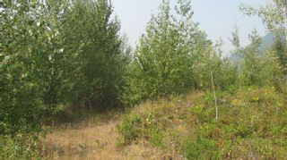 Photo 3: 80 Acres Creighton Valley Road, in Lumby: Vacant Land for sale : MLS®# 10239894
