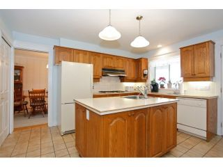 """Photo 6: 20197 42ND Avenue in Langley: Brookswood Langley House for sale in """"BROOKSWOOD"""" : MLS®# F1447063"""