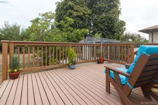Photo 18: 260 Regina Ave in VICTORIA: SW Tillicum House for sale (Saanich West)  : MLS®# 824726