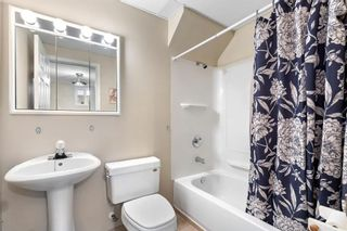 Photo 23: 7940 34 Avenue NW in Calgary: Bowness Detached for sale : MLS®# A1084792