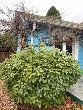 Photo 6: 723 W 20TH Street in North Vancouver: Mosquito Creek House for sale : MLS®# R2532659