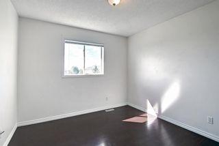 Photo 28: 7963 Laguna Way NE in Calgary: Monterey Park Detached for sale : MLS®# A1149870
