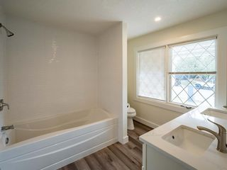Photo 22: 48 Foxwell Road SE in Calgary: Fairview Detached for sale : MLS®# A1150698