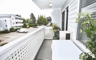 Photo 29: 218 32833 Landeau Place in Abbotsford: Central Abbotsford Condo for sale : MLS®# R2603347