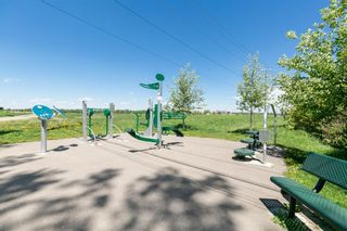 Photo 48: 6128 Belvedere Road SW in Calgary: Bel-Aire Detached for sale : MLS®# A1064403