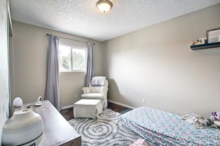 Photo 19: 159 Falton Way NE in Calgary: Falconridge Detached for sale : MLS®# A1113632