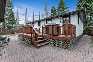 Photo 17: 8304 43 Avenue NW in Calgary: Bowness Detached for sale : MLS®# A1093020