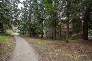 """Photo 18: 103 9150 SATURNA Drive in Burnaby: Simon Fraser Hills Townhouse for sale in """"Mountainwood"""" (Burnaby North)  : MLS®# R2541490"""