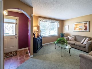 Photo 4: 223 Tanner Drive SE: Airdrie Detached for sale : MLS®# A1101335