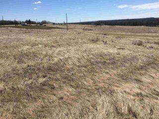Photo 3: 16 River Ridge Estates: Rural Wetaskiwin County Rural Land/Vacant Lot for sale : MLS®# E4235673