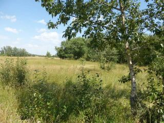 Photo 10: 40 26555  Twp 481: Rural Leduc County Rural Land/Vacant Lot for sale : MLS®# E4258053