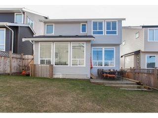 Photo 19: 24731 104 AVENUE in Maple Ridge: Albion House for sale : MLS®# R2137835