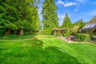 "Photo 12: 12665 54 Avenue in Surrey: Panorama Ridge House for sale in ""PANORAMA RIDGE"" : MLS®# R2570962"
