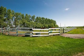 Photo 6: 30310 Rge Rd 24: Rural Mountain View County Detached for sale : MLS®# A1083161