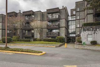 "Main Photo: 304 13501 96 Avenue in Surrey: Queen Mary Park Surrey Condo for sale in ""PARKWOODS"" : MLS®# R2558564"