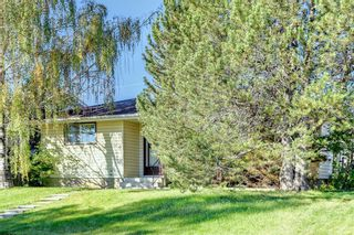Photo 4: 132 Mardale Crescent NE in Calgary: Marlborough Detached for sale : MLS®# A1146772