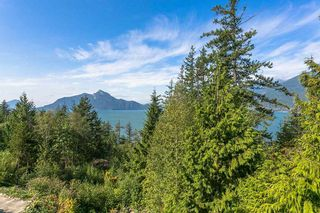 """Photo 19: 178 FURRY CREEK Drive in West Vancouver: Furry Creek House for sale in """"FURRY CREEK BENCHLANDS"""" : MLS®# R2202002"""