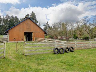 Photo 13: 5797 Oldfield Rd in Saanich: SW Elk Lake House for sale (Saanich West)  : MLS®# 843591