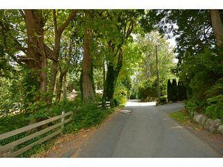 Photo 19: 12353 CEDAR Drive in Surrey: Crescent Bch Ocean Pk. House for sale (South Surrey White Rock)  : MLS®# F1446162