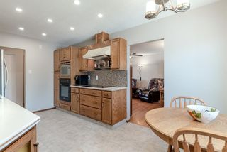 Photo 9: 744 Mapleton Drive SE in Calgary: Maple Ridge Detached for sale : MLS®# A1125027