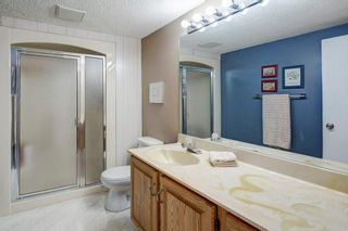 Photo 24: 527 MURPHY Place NE in Calgary: Mayland Heights Detached for sale : MLS®# C4297429