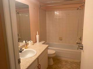 Photo 4: 112 18004 95 Avenue in Edmonton: Zone 20 Condo for sale : MLS®# E4262690
