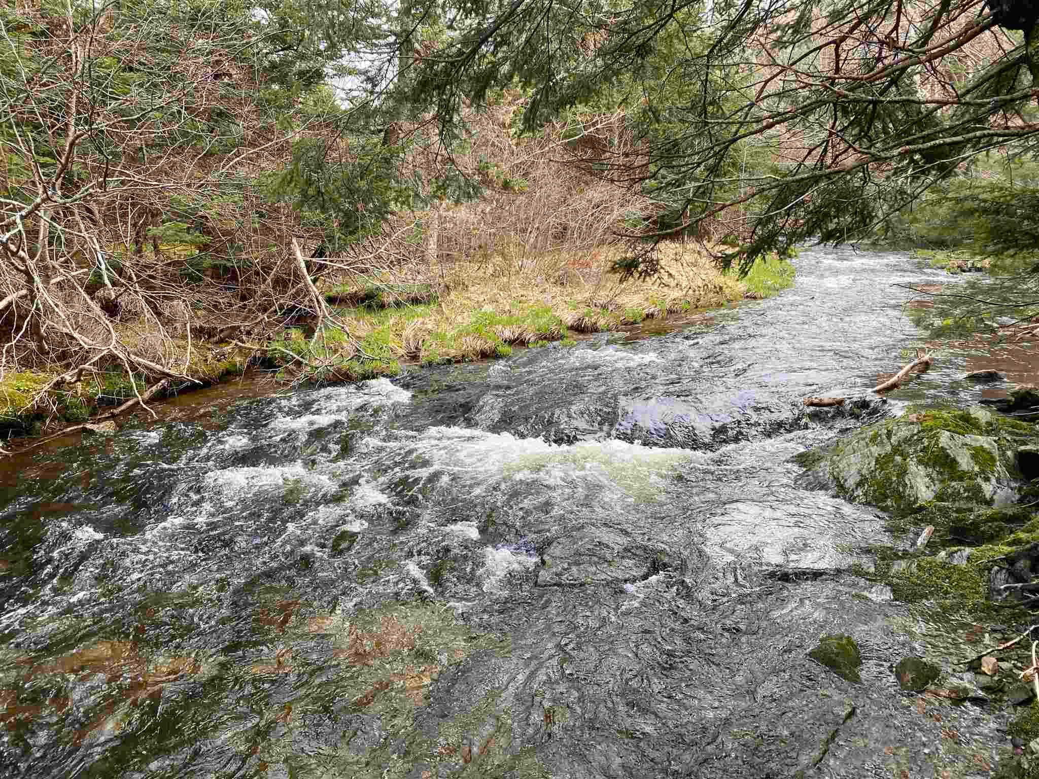 Main Photo: Sherbrooke Road in Greenvale: 108-Rural Pictou County Vacant Land for sale (Northern Region)  : MLS®# 202111683
