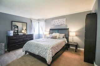 Photo 15: 135 Williamson Crescent in Winnipeg: Harbour View South Residential for sale (3J)  : MLS®# 202007780