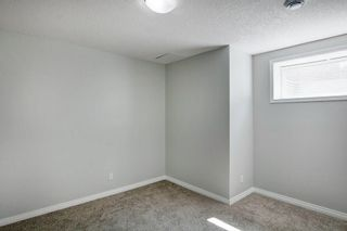 Photo 26: 21 CITADEL CREST Place NW in Calgary: Citadel Detached for sale : MLS®# C4197378