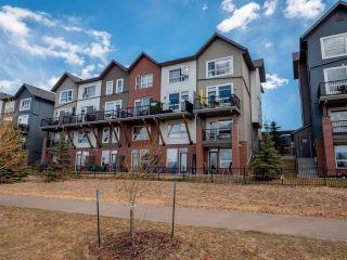 Photo 21: 87 2560 PEGASUS Boulevard in Edmonton: Zone 27 Townhouse for sale : MLS®# E4241876