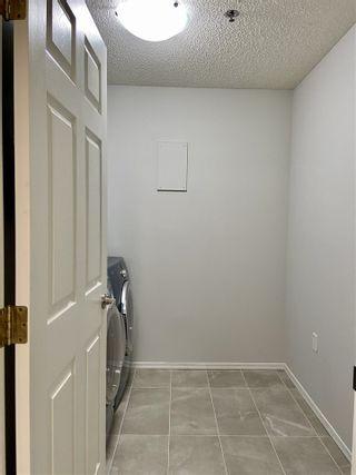 Photo 39: 203 17511 98A Avenue in Edmonton: Zone 20 Condo for sale : MLS®# E4224086