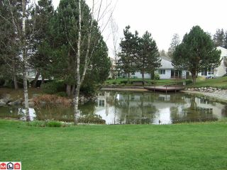"""Photo 6: 126 12233 92ND Avenue in Surrey: Queen Mary Park Surrey Townhouse for sale in """"ORCHARD LAKE"""" : MLS®# F1007573"""