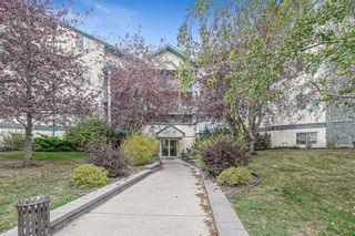 Main Photo: 203 20 Dover Point SE in Calgary: Dover Apartment for sale : MLS®# A1152591