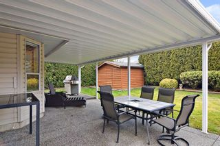 Photo 18: 22157 46 Avenue in Langley: Murrayville House for sale : MLS®# R2440187