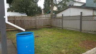 Photo 18: 167 SPRINGFIELD Drive in Langley: Aldergrove Langley House for sale : MLS®# R2137611