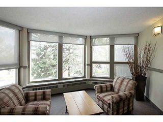 Photo 17: 205 816 89 Avenue SW in CALGARY: Haysboro Condo for sale (Calgary)  : MLS®# C3632405