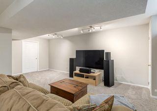 Photo 38: 37 Douglasbank Rise SE in Calgary: Douglasdale/Glen Detached for sale : MLS®# A1079543