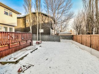 Photo 36: 9 Cambria Place: Strathmore Detached for sale : MLS®# A1051462