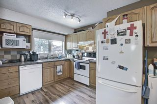 Photo 10: 367 Maitland Crescent NE in Calgary: Marlborough Park Detached for sale : MLS®# A1093291