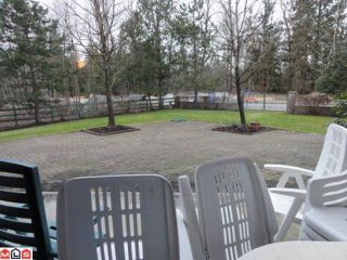Photo 10: 308 21975 49TH Avenue in Langley: Murrayville Condo for sale : MLS®# F1104779