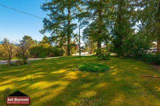 Photo 5: 12381 227 Street in Maple Ridge: North Maple Ridge House for sale : MLS®# R2569612