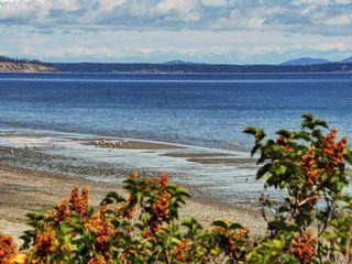 Photo 25: 5043 Cordova Bay Rd in VICTORIA: SE Cordova Bay House for sale (Saanich East)  : MLS®# 818337
