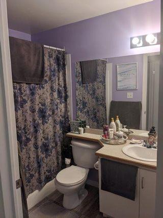 Photo 8: 310, 11325 83 Street in Edmonton: Condo for rent