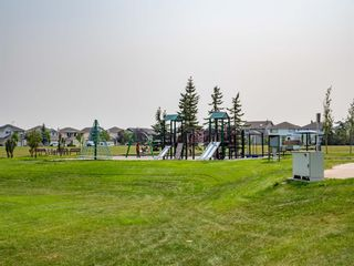 Photo 23: 216 Coral Springs Mews NE in Calgary: Coral Springs Detached for sale : MLS®# A1117800