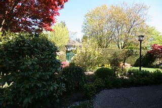 Photo 25:  in Vancouver: Home for sale : MLS®# v874332