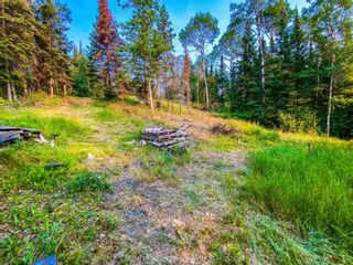 Photo 16: LOT 40 LILY PAD BAY in KENORA: Vacant Land for sale : MLS®# TB211834