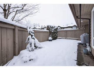 "Photo 19: 12 11737 236 Street in Maple Ridge: Cottonwood MR Townhouse for sale in ""MAPLEWOOD CREEK"" : MLS®# R2340245"