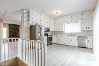 Photo 12: 42 STIRLING Road in Edmonton: Zone 27 House for sale : MLS®# E4252891